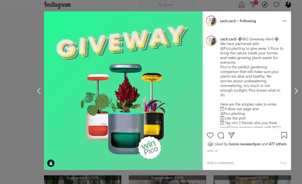 giveaway-pico